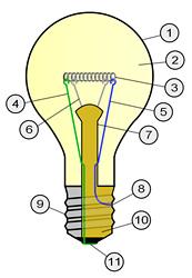 bulbParts2