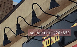 What's the Buzzzzz! in Montclair, NJ? Gooseneck #20/850 i the buzzzz!